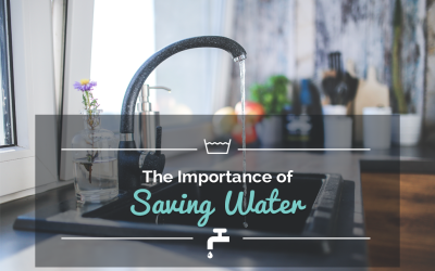 The Importance of Saving Water